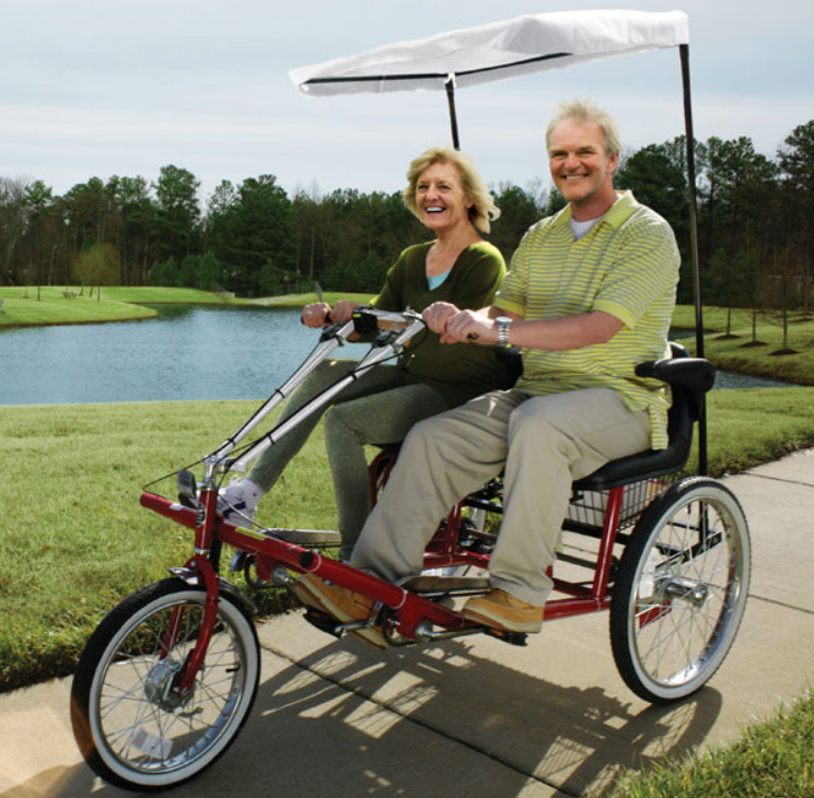 Electric Trike for Adults